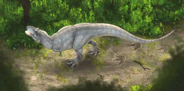 Молодые тираннозавры оказались проворнее взрослых.