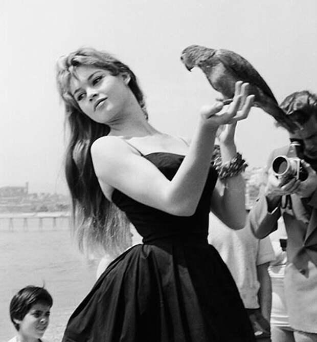 Брижитт Бардо (1956)