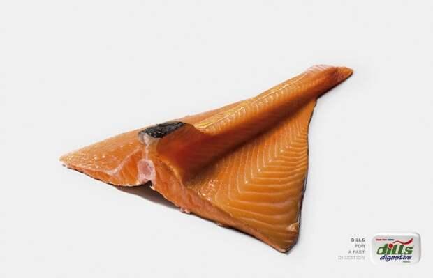 Как продвинуть рыбу в кишечник со скоростью самолета