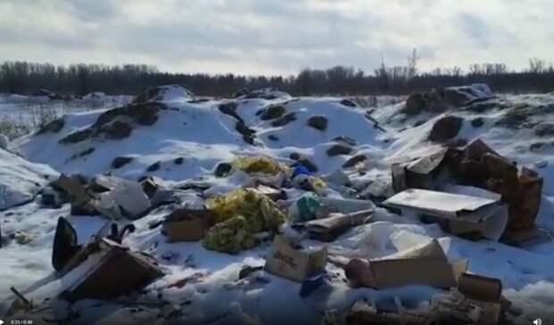 В Оренбурге в пойме реки Урал появилась новая незаконная свалка
