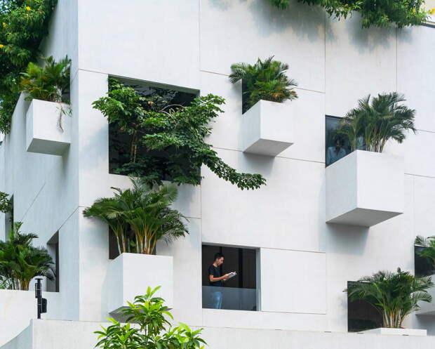 Вьетнамские архитекторы тоже умеют: Дом в плотной застройке с внутренними садами и бассейном