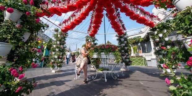 Фестиваль. Фото: mos.ru