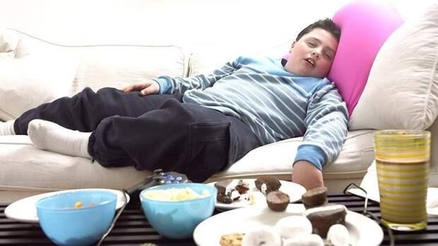 Помните е еще об одном - жесткие ограничения в борьбе с лишним весом тоже большая ошибка. Ребенок еще не понимает почему ему давали булки и печенье, а сейчас не разрешают категорически