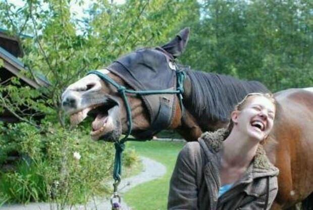 Уморительные фотографии, которые поднимут настроение и заставят посмеяться от души