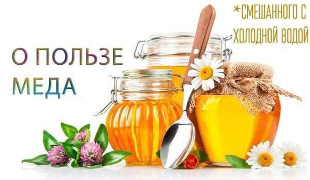 http://img0.liveinternet.ru/images/attach/c/10/109/760/109760880_getImage__27_.jpg