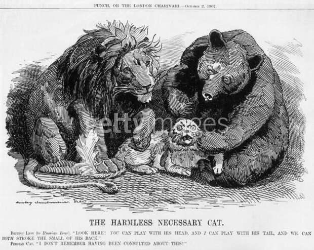 1907 Англия медведь, россия