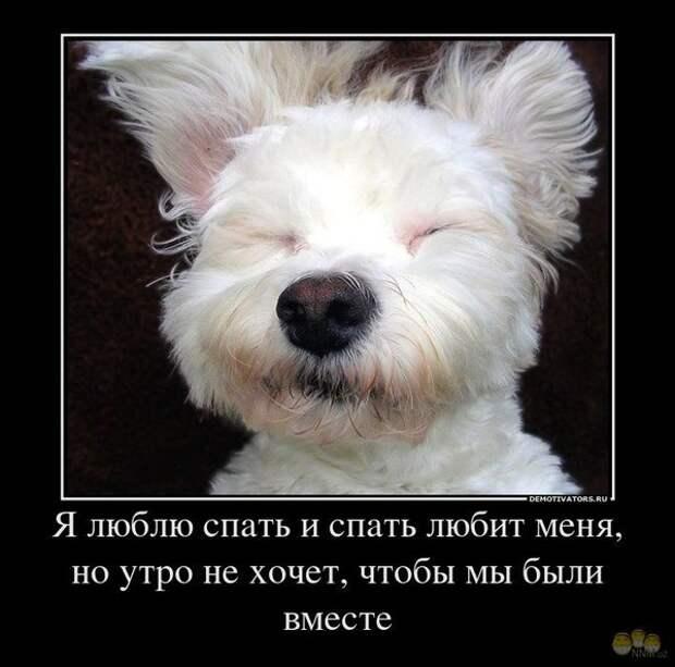 http://content.foto.mail.ru/mail/<a href=