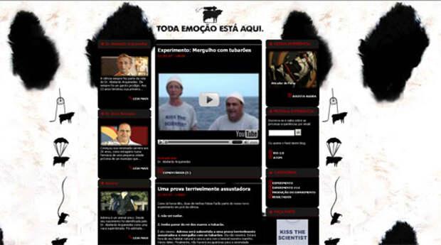 Скриншот сайта todaemocaoestaaqui.com