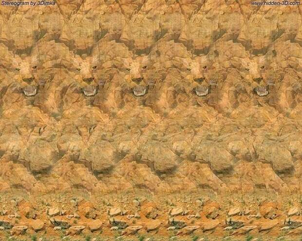 Стереограммы - Картинки, которые полезны для зрения