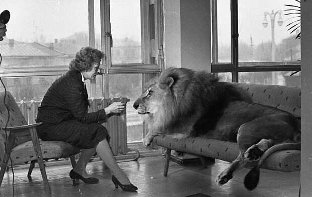 Ирина Бугримова с одним из своих львов.