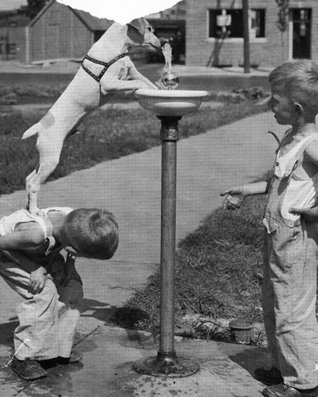 Дети остаются детьми даже в самые сложные времена