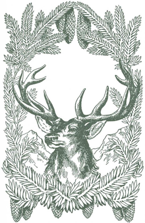 Vintage-Christmas-Deer-Image-GraphicsFairy-grn-667x1024 (455x700, 346Kb)