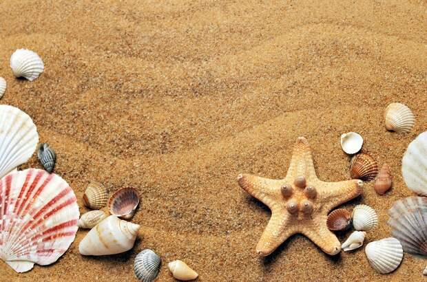 Читатели «Северного вестника» расскажут, где они провели отпуск