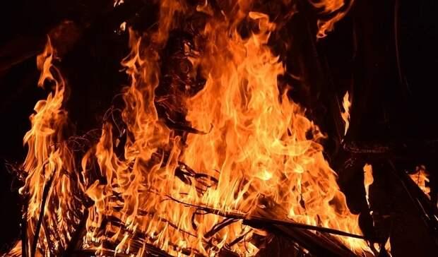 Сначала года вОренбуржье зарегистрировали 19 лесных пожаров