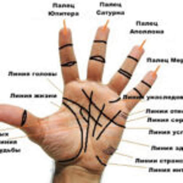 Линии на руке, могут рассказать вам, много нового о вас