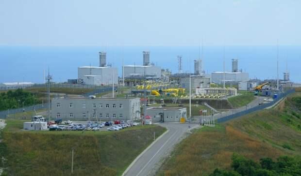 Структура «Газпрома» получила долю холдинга в«Голубом потоке»