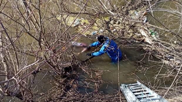 Бездыханное тело 90-летней пенсионерки обнаружили в реке под Пензой