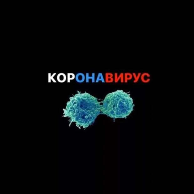 Прикольные вывески. Подборка chert-poberi-vv-chert-poberi-vv-16360614122020-10 картинка chert-poberi-vv-16360614122020-10