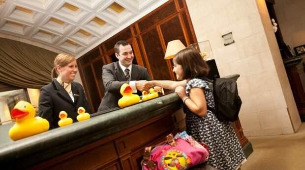 Аксёнов разрешил селить приезжих детей-спортсменов в гостиницы Симферополя