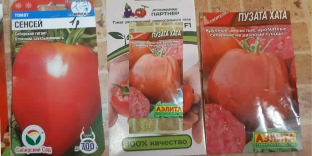 Пузата хата, Вова Путин и другие сорта, которые дадут знатный урожай- 2021