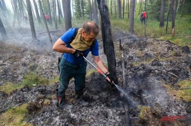 В Иркутской области ликвидировали все лесные пожары