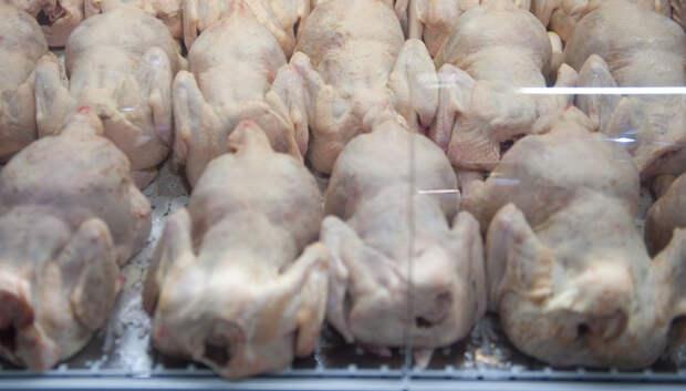 Подмосковные птицефабрики проверили на наличие заразных болезней