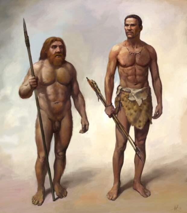 Интимные истории неандертальцев и гомо сапиенс, или как появились современные люди