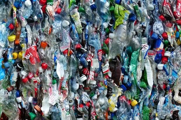 Раздельный сбор, переработка пластика и спасение еды: 12 текстов «Бумаги» об экологии и осознанном потреблении
