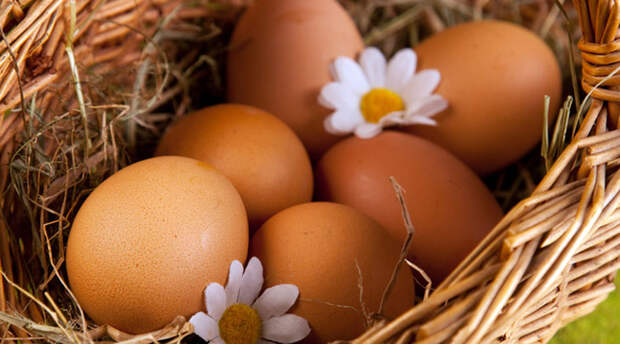 Едим по 3 яйца в день: смотрим результат за месяц