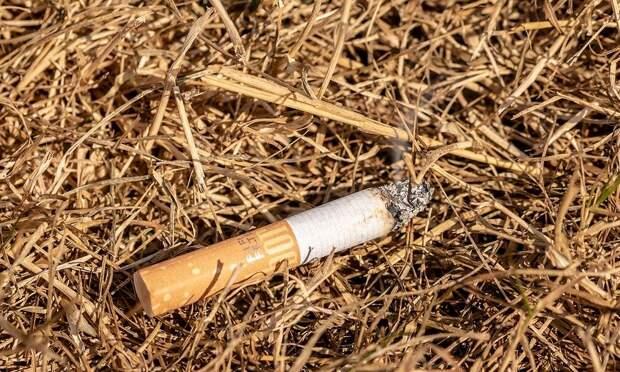 Самозатухающие сигареты через два года должны сократить число пожаров из-за непотушенных окурков.