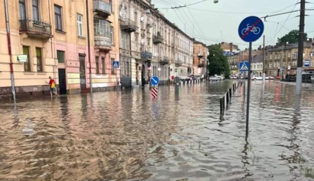 Поваленные деревья, не ходит транспорт, по улицам бегут реки: буря во Львове