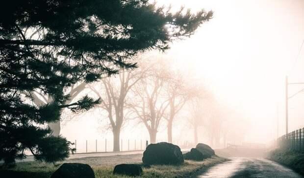 Пасмурная и дождливая погода ждет ростовчан в четверг