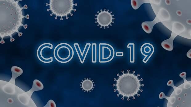 Количество COVID-заразившихся в Севастополе увеличилось до 267 человек