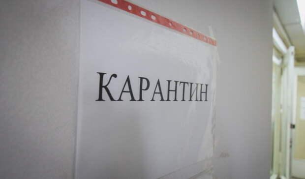 В Сюмсинском районе Удмуртии 18 классов в школах закрыли на карантин по ковиду и ОРВИ
