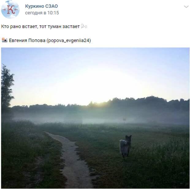Фото дня: туманное утро