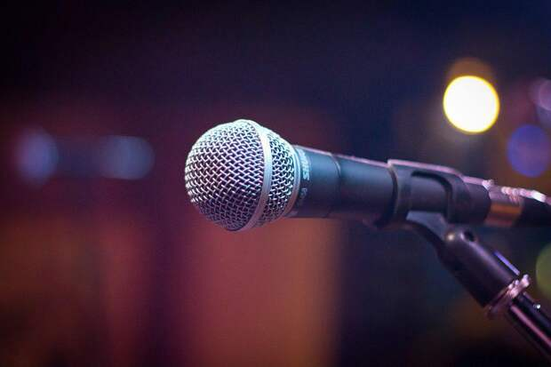 Микрофон. Фото: pixabay.com