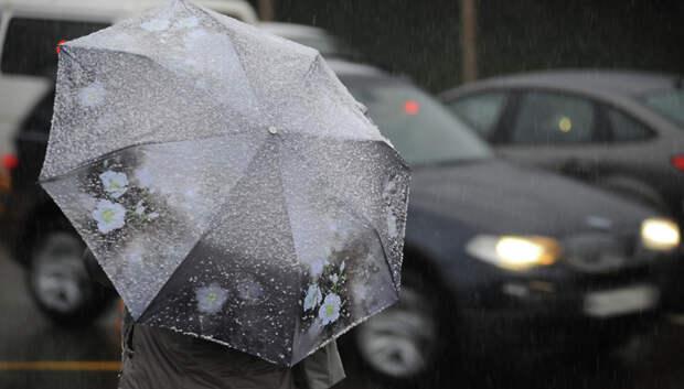 Мокрый снег с дождем и сильный ветер ожидают жителей Московского региона в конце недели