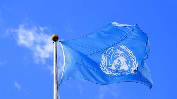 В ООН приветствовали завершение проверки войск в России