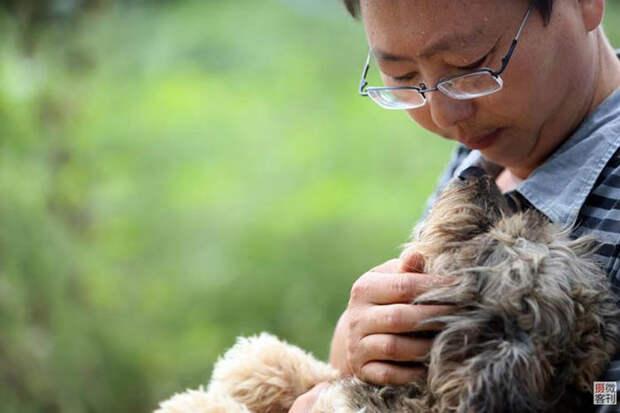Чжоу просто не смог остаться равнодушным и решил помогать животным, как может.