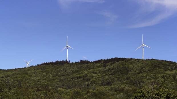 Зелёная энергия и восстановление экономики после пандемии