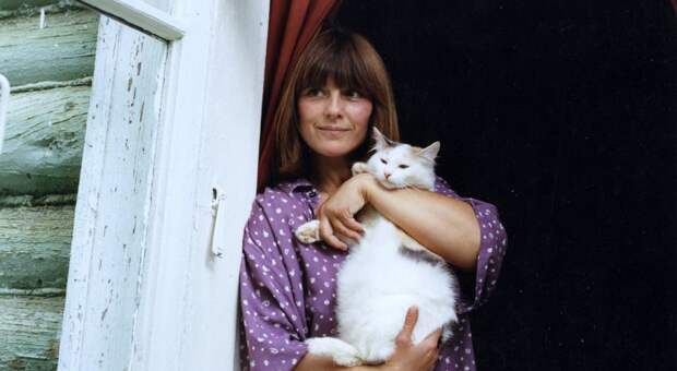 Две любви и 14 кошек Натальи Варлей