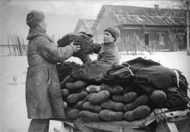 45 откровенных фактов о русском народе россия, русские, факты