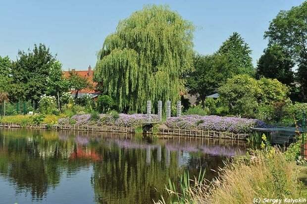Водный сад супругов Майнхард