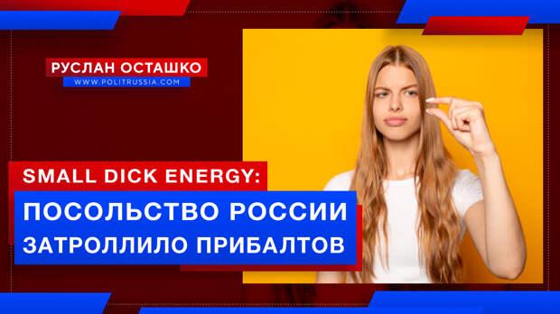 Посольство России затроллило прибалтов, назвав их возню «small dick energy»