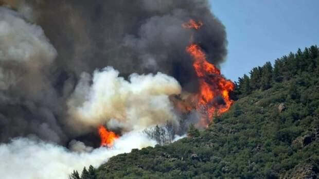 В Мармарисе начали эвакуировать туристов из-за сильных лесных пожаров