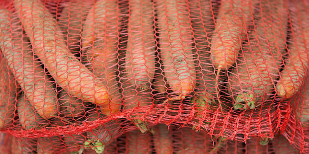 Секреты сочных корнеплодов: эксперт дал рекомендации по хранению моркови и свеклы
