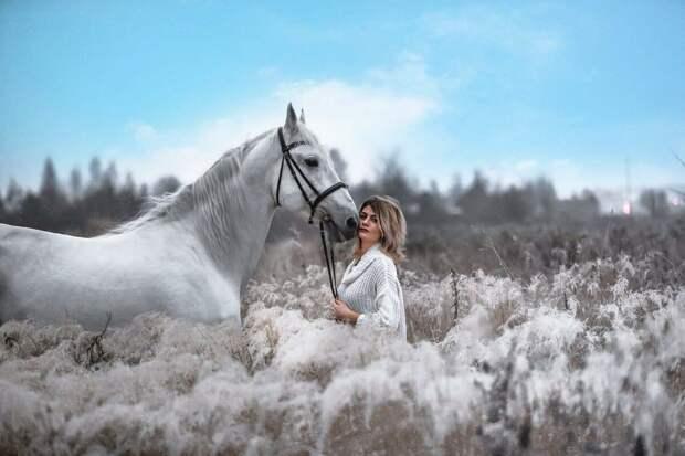 Цирковой конь вышел на пенсию и стал фотомоделью!