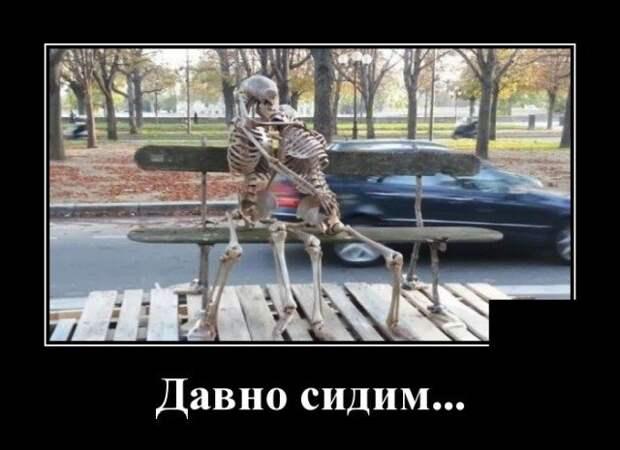 Демотиватор про скелетов