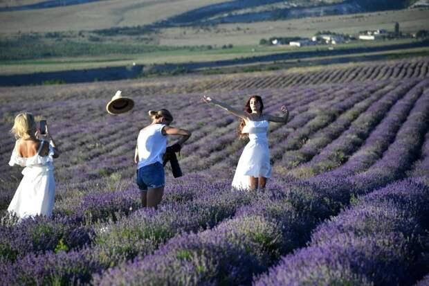 По законам гостеприимства: сельский туризм становится все более привлекательным в нашей стране