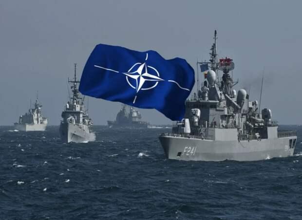 Киев и Тбилиси надеются обменять Черное море на членство в НАТО